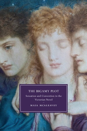 The Bigamy Plot Sensation and Convention in the Victorian Novel