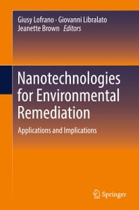 Nanotechnologies for Environmental Remediation: Applications and Implications