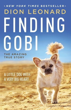 Finding Gobi A Little Dog with a Very Big Heart