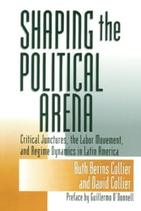 Shaping the Political Arena