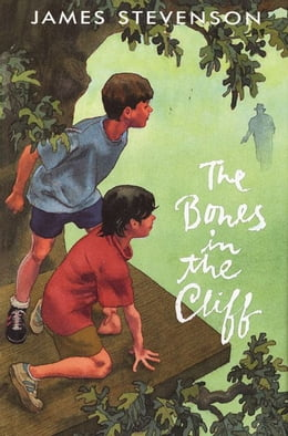 Book The Bones in the Cliff by James Stevenson