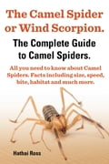 The Camel Spider or Wind Scorpion. The Complete Guide to Camel Spiders. All You Need to Know About Camel Spiders. Facts Including Size, Speed, Bite and Habitat. 06f50ad8-1ad7-4730-93dc-81740b899457