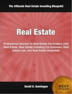Real Estate: Professional Secrets To Real Estate Information, USA Real Estate, Real Estate Investing For Dummies, by David Domingue