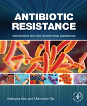 Antibiotic Resistance Mechanisms and New Antimicrobial Approaches