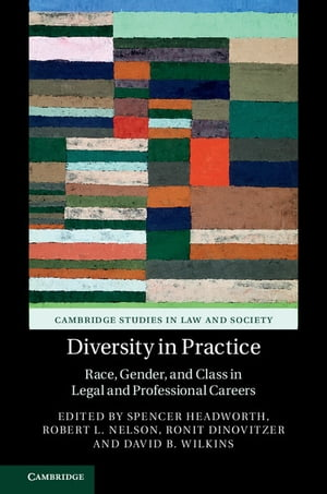Diversity in Practice Race,  Gender,  and Class in Legal and Professional Careers