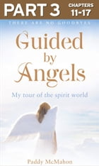 Guided By Angels: Part 3 of 3: There Are No Goodbyes, My Tour of the Spirit World by Paddy McMahon