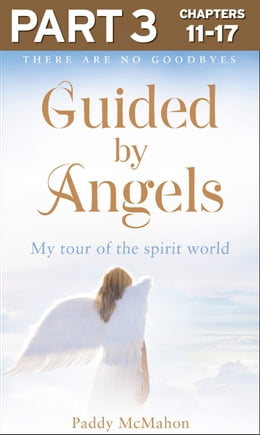 Book Guided By Angels: Part 3 of 3: There Are No Goodbyes, My Tour of the Spirit World by Paddy McMahon