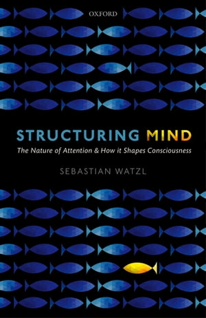 Structuring Mind The Nature of Attention and how it Shapes Consciousness