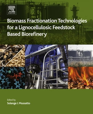 Biomass Fractionation Technologies for a Lignocellulosic Feedstock Based Biorefinery
