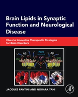 Book Brain Lipids in Synaptic Function and Neurological Disease: Clues to Innovative Therapeutic… by Jacques Fantini