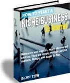 How to start a niche business by Joe Tiew