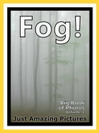 Just Fog Photos! Big Book of Photographs & Pictures of Foggy Mist, Vol. 1 by Big Book of Photos