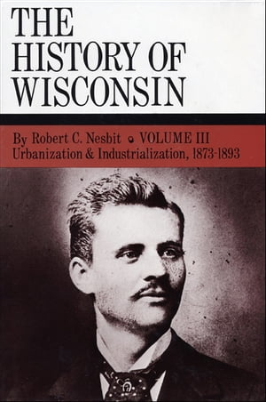 Urbanization & Industrialization 1873-1893 History of Wisconsin,  Volume III