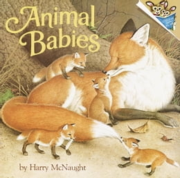 Book Animal Babies by Harry McNaught