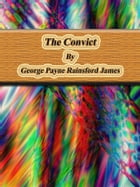 The Convict by George Payne Rainsford James