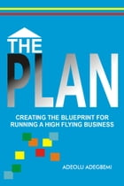 The Plan:Creating the Blueprint for Running a High Flying Business by Adeolu Adegbemi