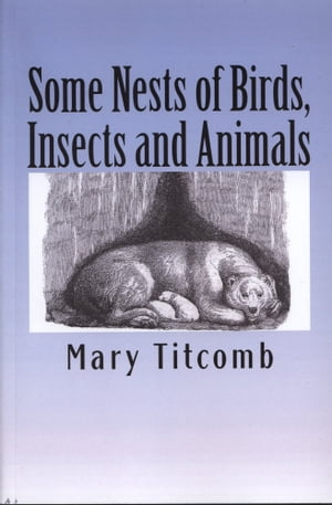 Some Nests of Birds,  Insects and Animals