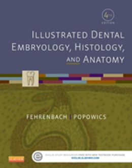 Book Illustrated Dental Embryology, Histology, and Anatomy by Margaret J. Fehrenbach