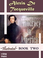 Democracy in America: Book Two by Murat Ukray