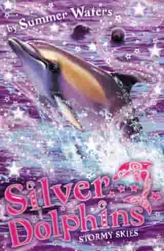 Stormy Skies (Silver Dolphins, Book 8) by Summer Waters