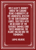 Niels Klim's journey under the ground: being a narrative of his wonderful descent to the subterranean lands; together with an account of the sensible animals and trees inhabiting the planet Nazar and the firmament.