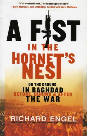 A Fist in the Hornet's Nest On the Ground in Baghdad Before,  During & After the War