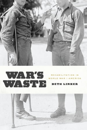 War's Waste Rehabilitation in World War I America
