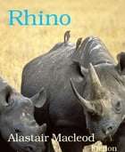 Rhino by Alastair Macleod