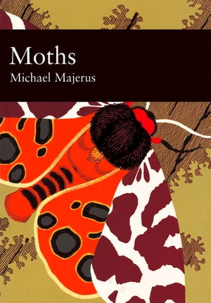 Moths (Collins New Naturalist Library, Book 90) by Mike Majerus