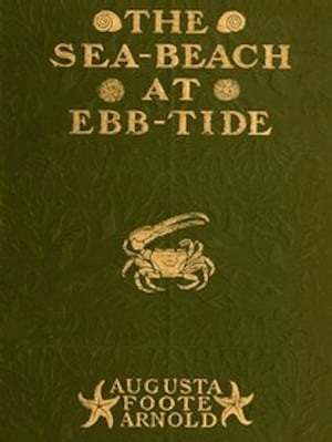 The Sea-beach at Ebb-tide (Illustrated)