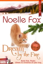 Dream by the Fire: North Pole, Alaska by Noelle Fox