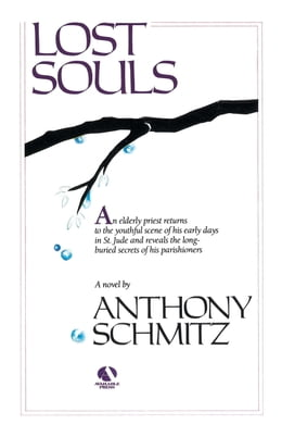 Book Lost Souls by Anthony Schmitz