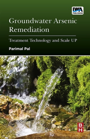 Groundwater Arsenic Remediation Treatment Technology and Scale UP