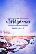 A Bridge Apart by David DiPillo