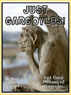 Just Gargoyle Photos! Big Book of Photographs & Pictures of Gargoyle Statues, Vol. 1 by Big Book of Photos