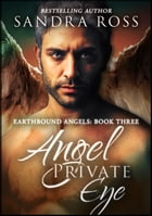 Angel Private Eye (Complete): Earthbound Angels 3 by Sandra Ross