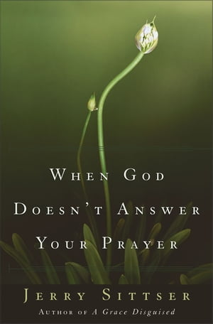 When God Doesn't Answer Your Prayer Insights to Keep You Praying with Greater Faith and Deeper Hope