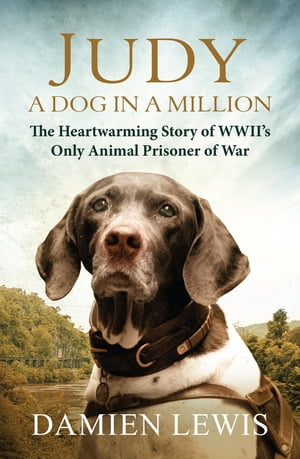 Judy: A Dog in a Million From Runaway Puppy to the World's Most Heroic Dog