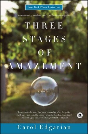 Three Stages of Amazement: A Novel by Carol Edgarian
