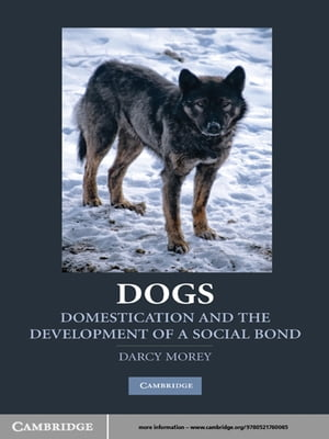 Dogs Domestication and the Development of a Social Bond