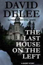 The Last House on the Left by David DeLee