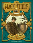 The Magic Thief: A Proper Wizard by Sarah Prineas