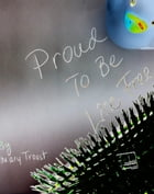 Proud To Be Lice Free by Mary Troost