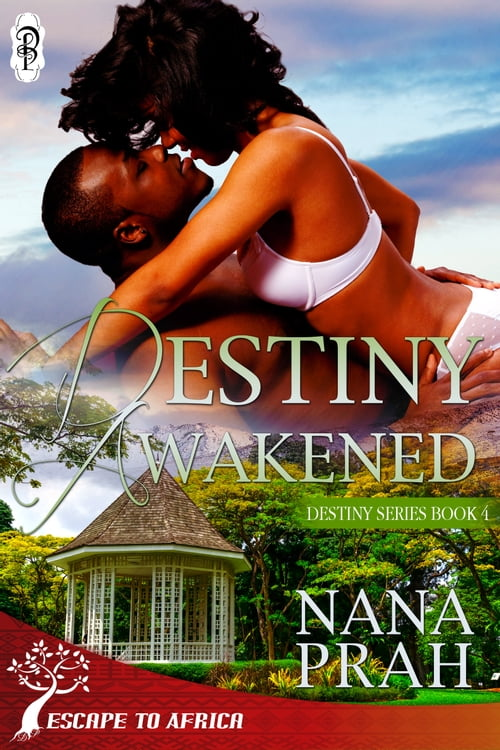 Destiny Awakened (Destiny African Romance #4)