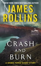 Crash and Burn: A Sigma Force Short Story by James Rollins