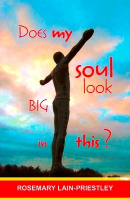 Book Does My Soul Look Big in This? by Rosemary Lain-Priestley