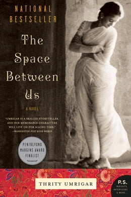 Book The Space Between Us: A Novel by Thrity Umrigar