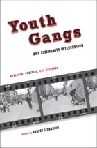 Youth Gangs and Community Intervention: Research, Practice, and Evidence by Robert Chaskin