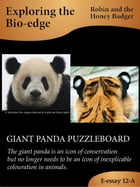 Giant Panda Puzzleboard by Robin and the Honey Badger