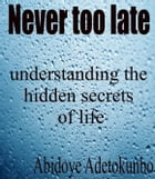 Never too late: understanding the hidden secrets of life by Adetokunbo Abidoye